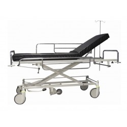 Transportavimo vežimėlis  310001  4
