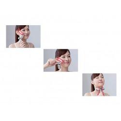 Veido masažuoklis 3D Y